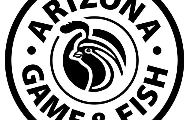 Arizona Game and Fish Wildlife Cams