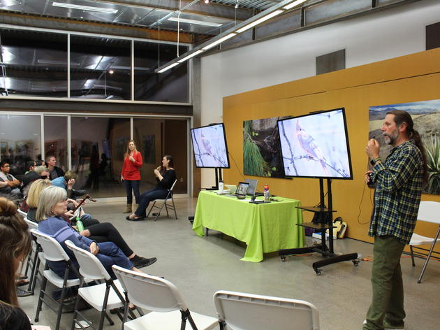 Birds n' Beer Recap: How Birds and Biomimicry can Improve Human Designs