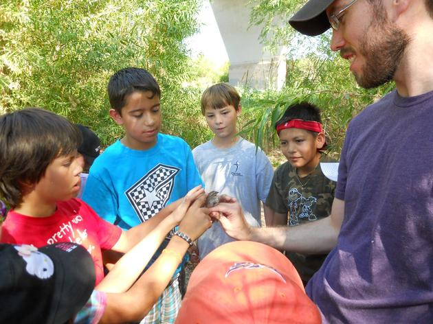 Audubon Arizona Recruiting Volunteers for Nature Education and More