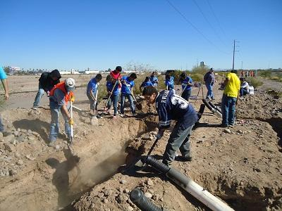 Students from Carl Hayden High School installing artificial burrows.