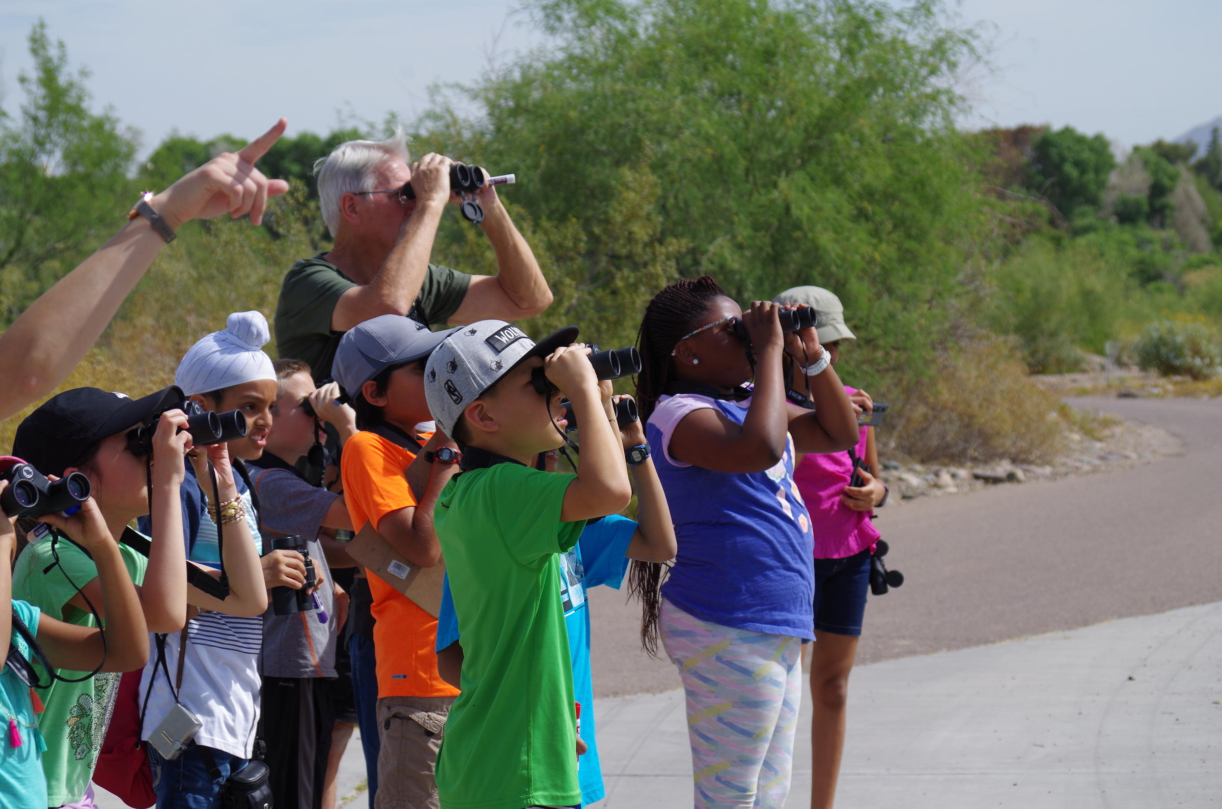 A group of birders look up into the sky with their binoculars.